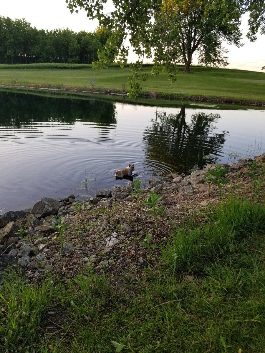 Some of the best spots are still a secret #fishing #golf #outdoors pic.twitter.com/UzCrn3CXsQ
