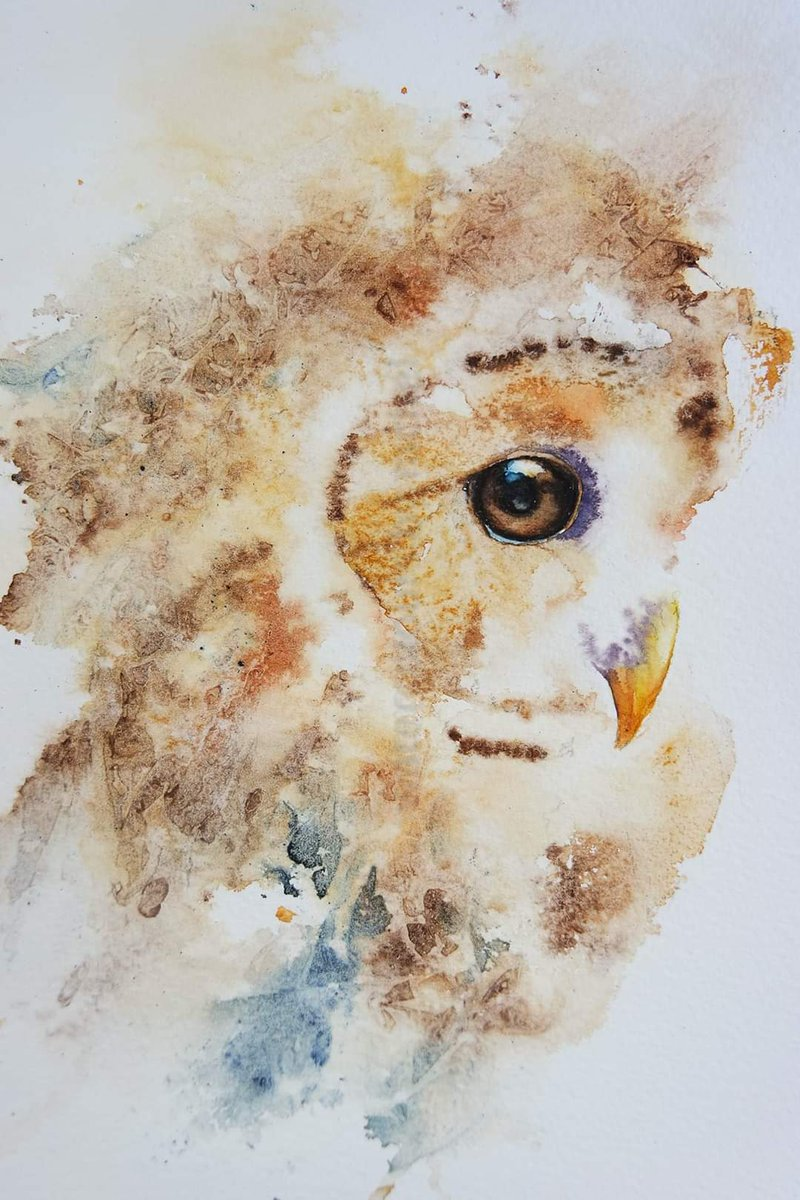 Tawny Owl Happy Saturday x  #watercolor #animalportrait #BigArtBoost #thedailysketch #devon #wildlife #wildlifeartist #movement #painting #art #artist #paint #loosepainting #texture #animal #splatters #eyes #birds #owls #tawnyowl #watercolorpaintingpic.twitter.com/TJw7uNl2xp
