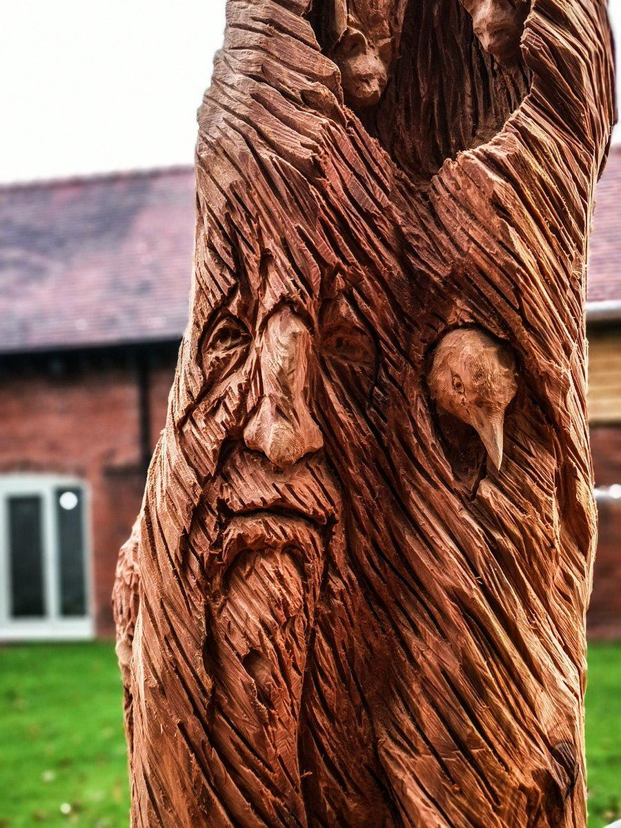 treecarving photo