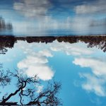 Image for the Tweet beginning: Lago en el cielo Bosques de