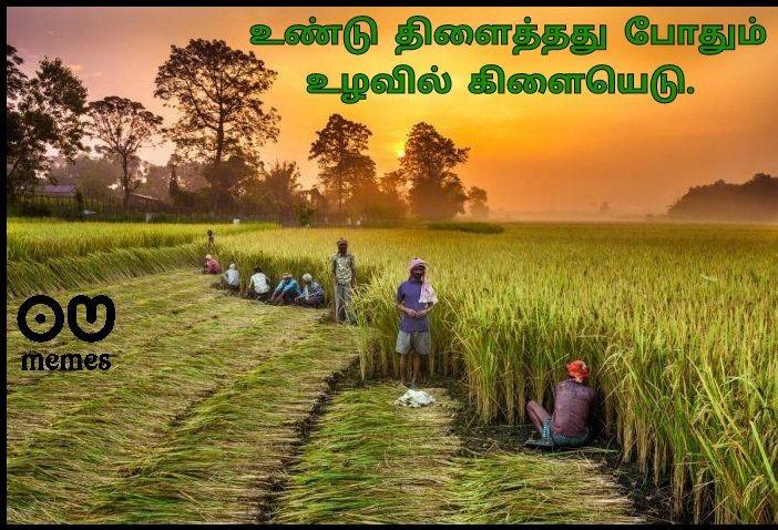 'King become a Joker, because of a Farmer cried' @DeepSandhu_K  #FarmersProtest #Tractor2Twitter  #NoFarmers_NoFood #nofarmers_nofuture #Support_Our_Farmers  #Farmers_RoaringInUP  #FarmersProtest_StandsStrong #savefarmers  #27Sept_BharatBandhWithFarmers #ஒன்றியஉயிரினங்கள்