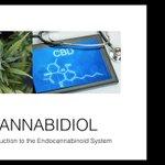 Image for the Tweet beginning: #edibles #cbdoil #prerolls #cannabis
