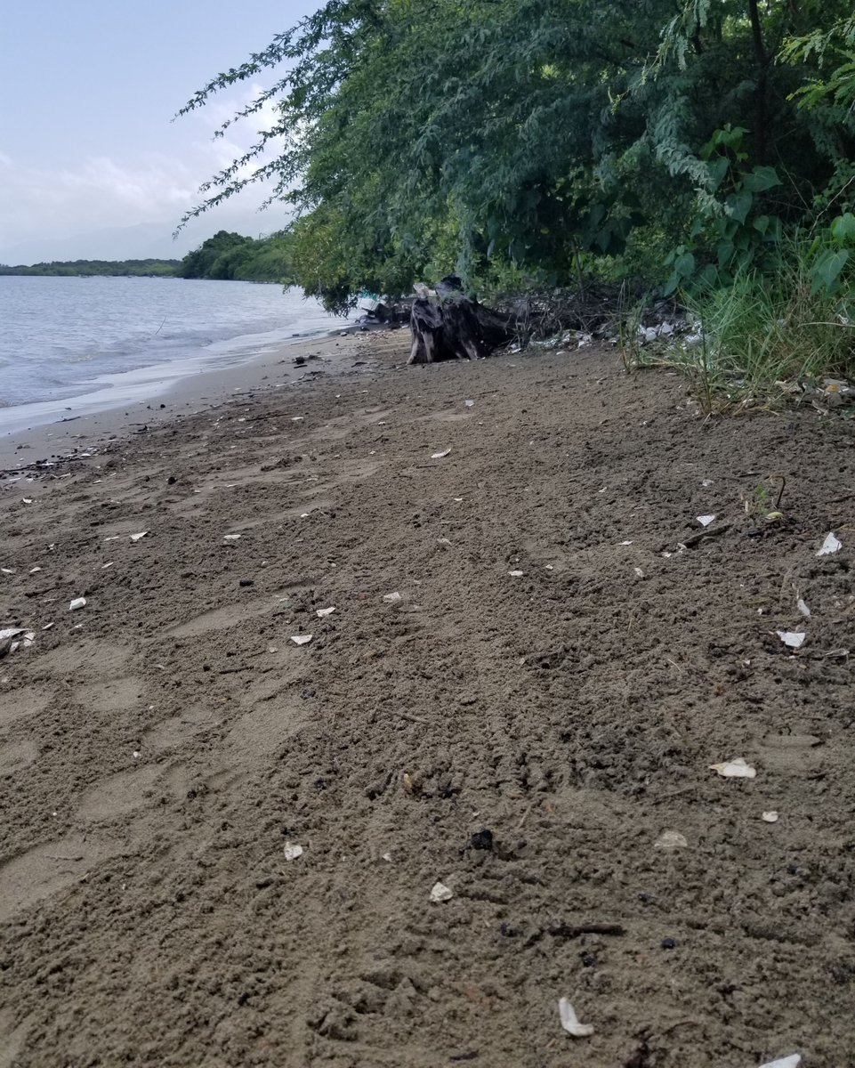 Before ➡️ After Our professional cleanup crews in Haiti recently recovered over 1,407 pounds of trash from this coastline off Archaie! What items do you see the most of on this polluted beach?