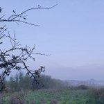 @Marcel_Eichhorn - Schitterend, de flarden herfst mist over de #Zuidpolder #barendrecht https://t.co/7Rus2ptojU