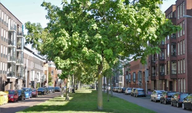 test Twitter Media - Help mee om van Ypenburg een nog fijnere wijk te maken! -  https://t.co/5rAlwJ3vVX https://t.co/BSWAiDwXh1