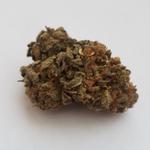 God Strain Highest Measured Values Total THC 20.57% Total CBD 0.04% Total CBG 0.43%  #cbdnews #hplc #cannabistest #cbdtest #hemptest #hempoil #hempfarm #hempnews #hempCigarettes #cbdoil #cbdedibles #hempfarm #CannabisCommunity #Cannabismedizin #cannabismedicinalja #canna
