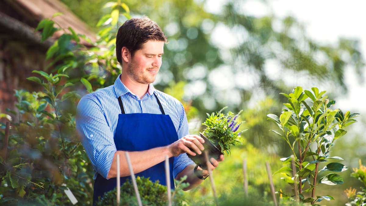 Do you export plant products, plant produce or used farm machinery? 🌱 The new Plant Health Export Service (PHES) IT system is now live. Register today: gov.uk/guidance/apply…