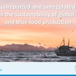 Image for the Tweet beginning: #IUU fishing also threatens the