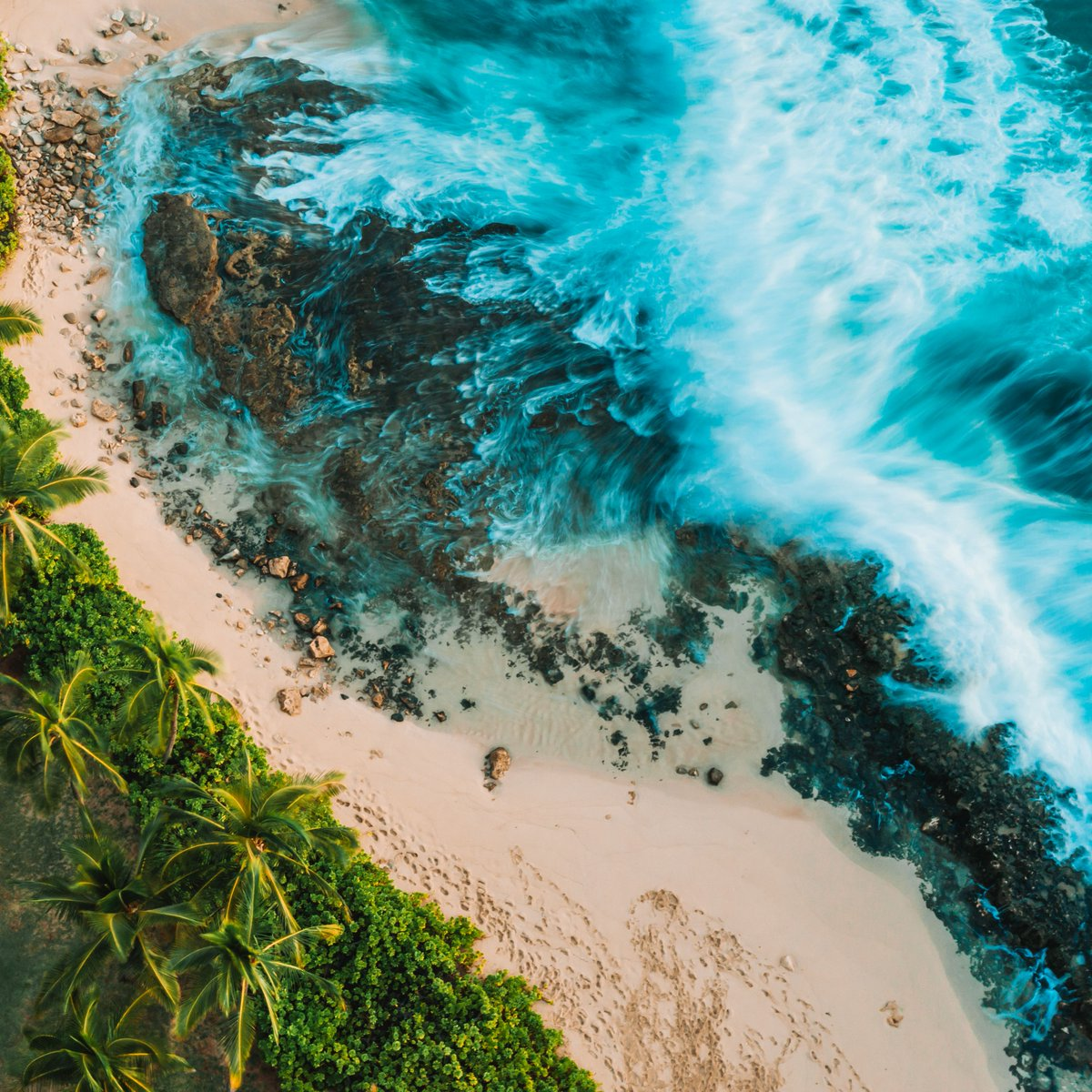 LAST CHANCE: Enter to win a free trip to Hawaii ✈️ We're giving one lucky member of the clean ocean movement and a friend the chance to fly to Oahu, Hawaii! TO ENTER, visit bit.ly/3zwinkZ & fill out the form for your chance to win this incredible trip!