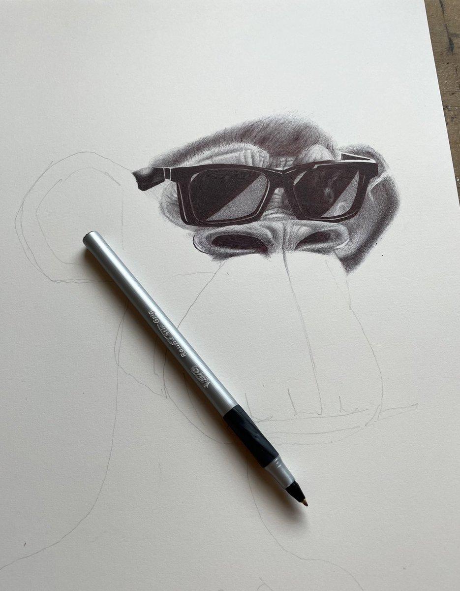 a drawing in progress of @tropoFarmer's 3D ape • bic ballpoint pen on paper (cc @BoredApeYC)