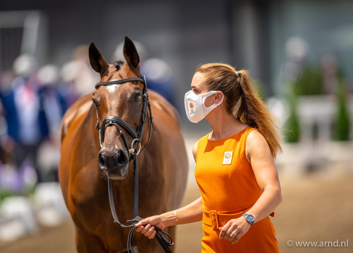 test Twitter Media - Nieuws -  EK Eventing: Nederlandse paarden vlot door de vetcheck https://t.co/x3iSxO4avf https://t.co/kHfii08PzJ
