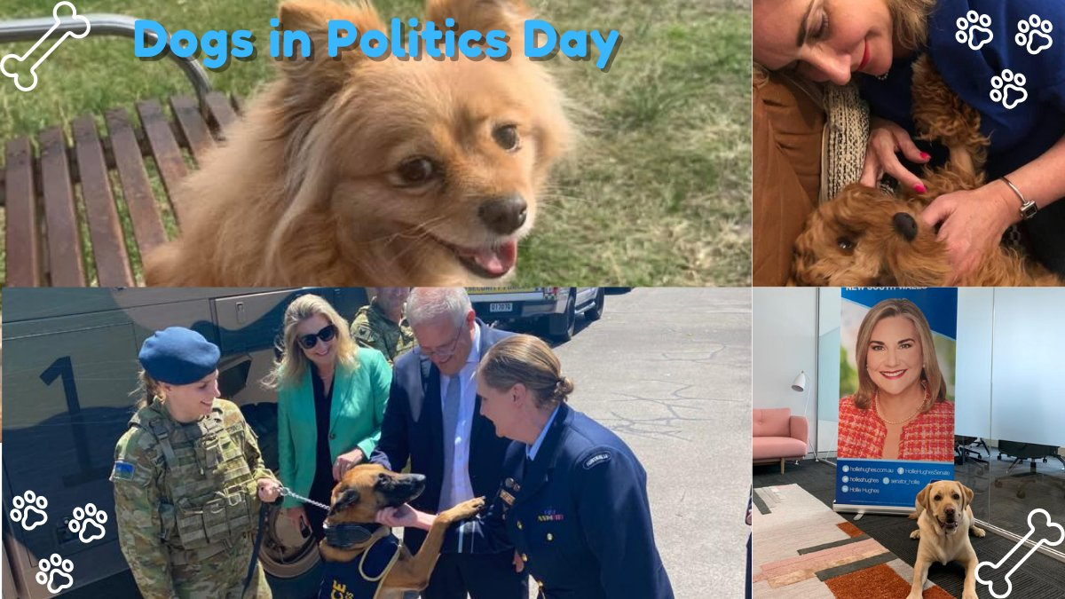 Today marks Dogs in Politics Day 2021! This year, @drchrisbrown and @MarsGlobal are promoting the #KeepAusPetFriendly campaign, which aims to keep our furry friends in mind when developing public spaces. Find out more at petpositives.com.au #DogsInPoliticsDay