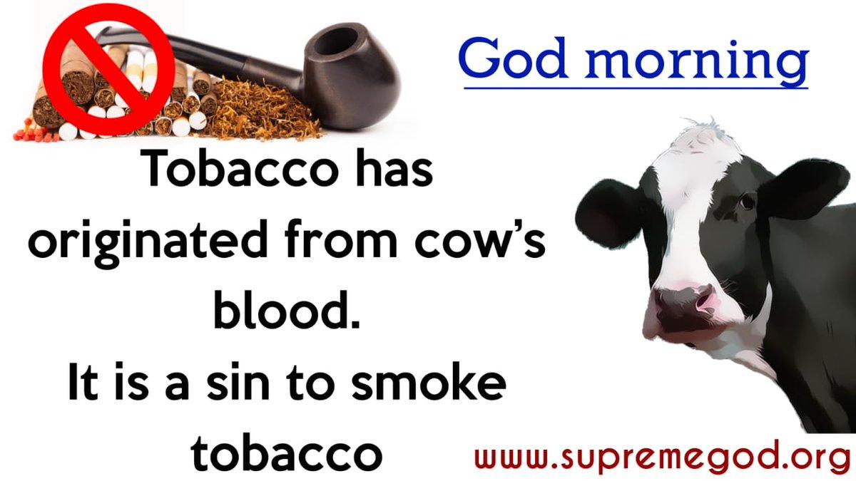 RT @DKastoori2: #GodMorningThursday  Don't Smoking अधिक जानकारी के लिए पढ़े पुस्तक...