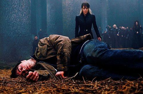 Voldemort, Harry'nin içindeki hortkuluğu yok ettikten sonra, Harry'nin Çataldili konuşma özelliği kaybolmuştur.