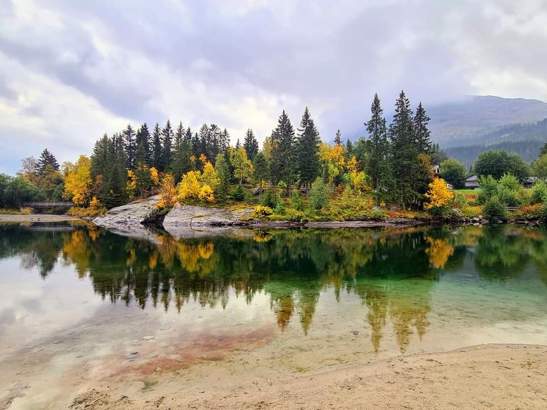 RT @elusive_moose: Autumn in Hemsedal 😍 Photo Aud Elise Iversen #Norway #fall @Hemsedalcom 🍂 https://t.co/soBbDyxM0A