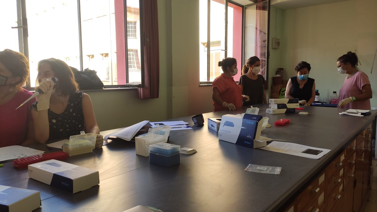 test Twitter Media - #CitizenFlyLab forma a profesoras para validar experimentalmente #Transposones en el #genoma de #Drosophila previamente identificados con #Bioinformatica del projecto de #CienciaCiudadana de #MelanogasterCTF para estudiantes de @LCATMon @GonzalezLab_BCN @FGCSIC  i @FECYT_Ciencia https://t.co/WS1xosqPfP