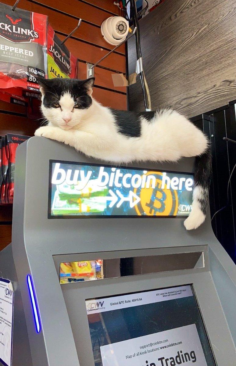 wie ist sicher bitcoin di trading)