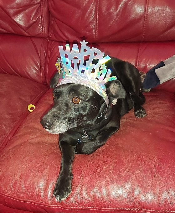 Happy birthday Ollie, we are sending hugs too, you are a very big boy and very handsome