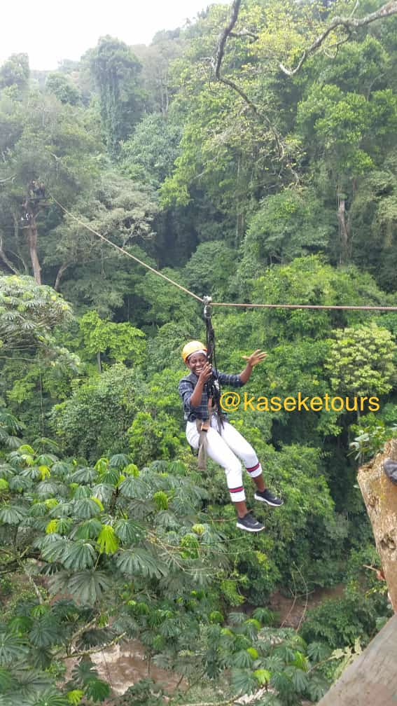 Get ready to hike and meet the source of enjoyment in mabira forest 💃💃 Zip lining and nature walk in the forest  On 26th/09/2021 at only 100k👊🔥            Book now with us on our platforms +256(0)703688807 Kaseketours@gmail.com   #tulambuleuganda