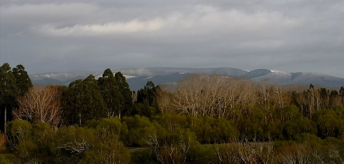 Bbbbr, snow on the Taringatura Hills and no picnicking on our frosty tables this morning in Dipton. - 1°c