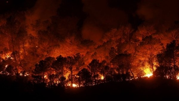 Spain Wildfire trinitymirror.net/news/spain-wil… The blaze in Malaga province has destroyed nearly 7,000 hectares (17,300 acres) of forest. #Spain #forestfires #nature #wildfire