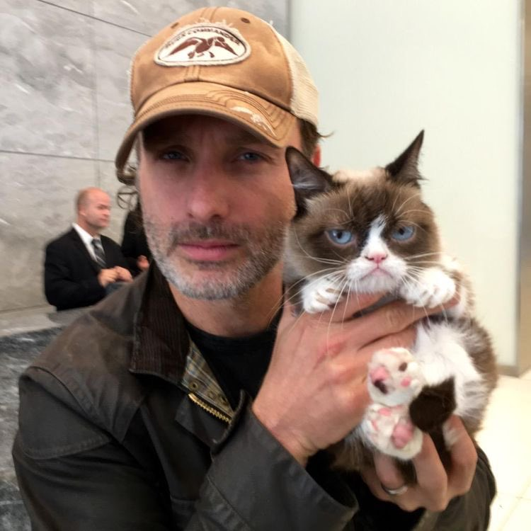 HAPPY BIRTHDAY TO THE AWESOME ANDREW LINCOLN WE LOVE YOU ANDY PANDY