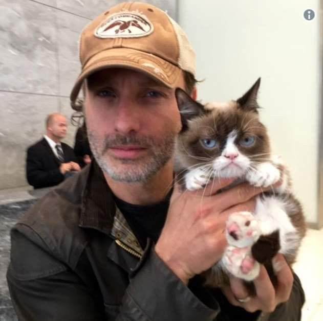 Happy birthday to the only man ever Andrew Lincoln <3