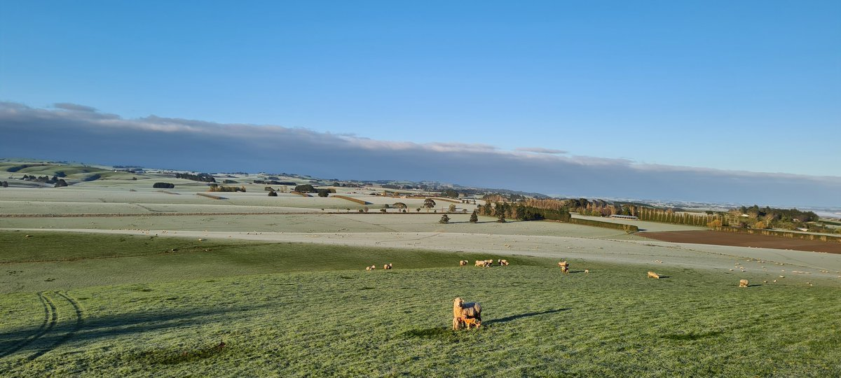 Standing on a hill, near Wyndham, in some beautiful sunshine finally.  Can you please confirm for me that that big cloud is Antarctica bound?