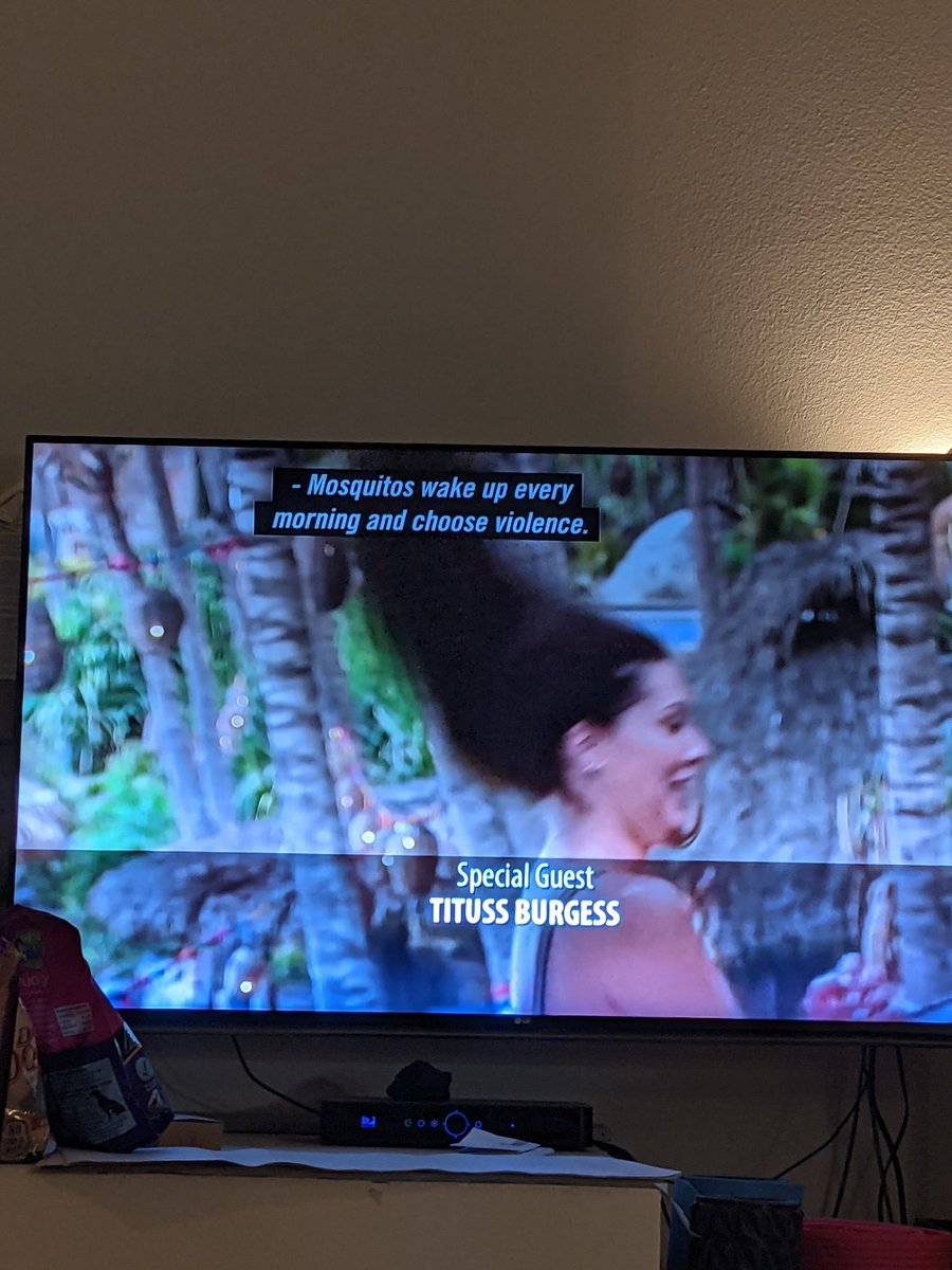 RT @FeliciaReality: Aaron's facts of paradise are the amendments I live by #BachelorInParadise https://t.co/VCJSZqcVUN