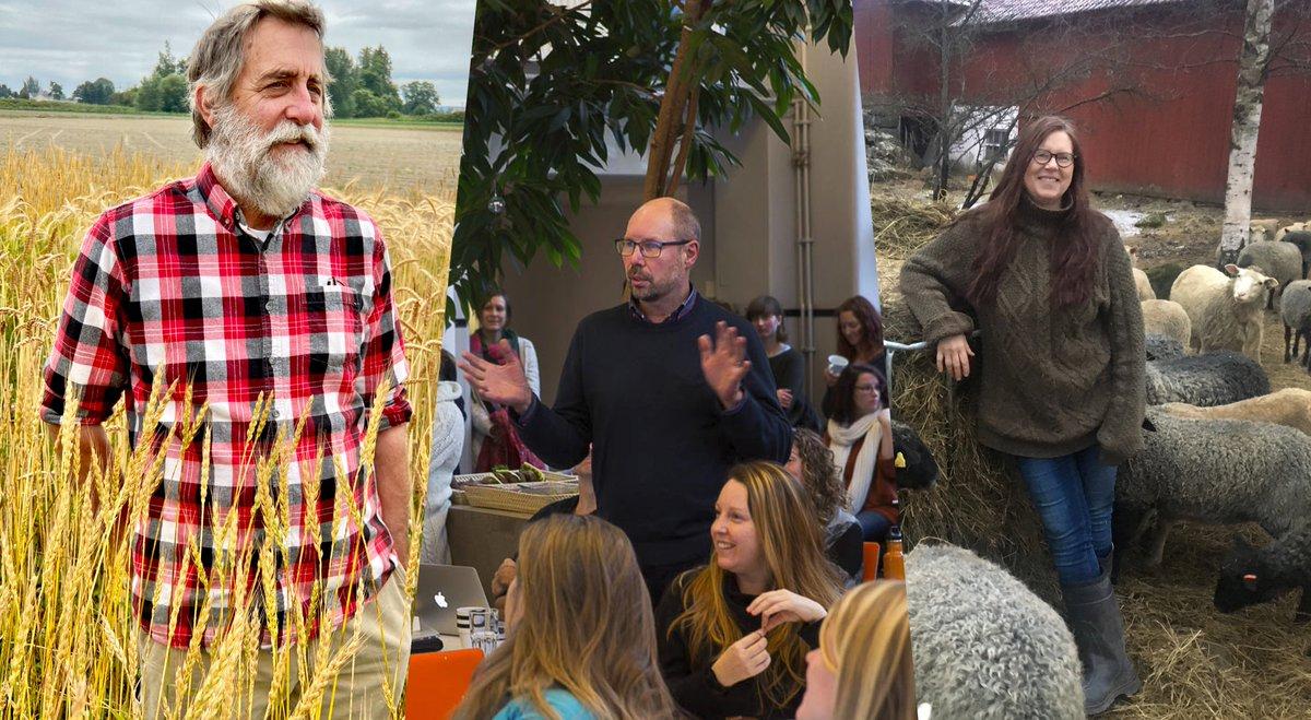 Idag presenterar vi finalisterna till Utstickarpris: Ullförmedlingen, The Bread Lab och StockholmResilienceCenter!  Alla tre visar på vikten av samverkan och medskapande som är årets tema. Vinnaren utses 4/11.  Läs mer om årets tema och finalisterna:  https://t.co/tbgFVLXjRw https://t.co/grGtcyxhWo