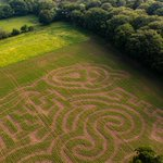 Image for the Tweet beginning: Both our Amaizing Maze &