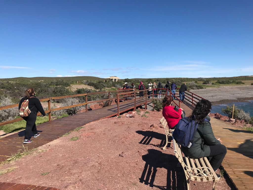 Chubut: se abrió al turismo la reserva de Punta Tombo