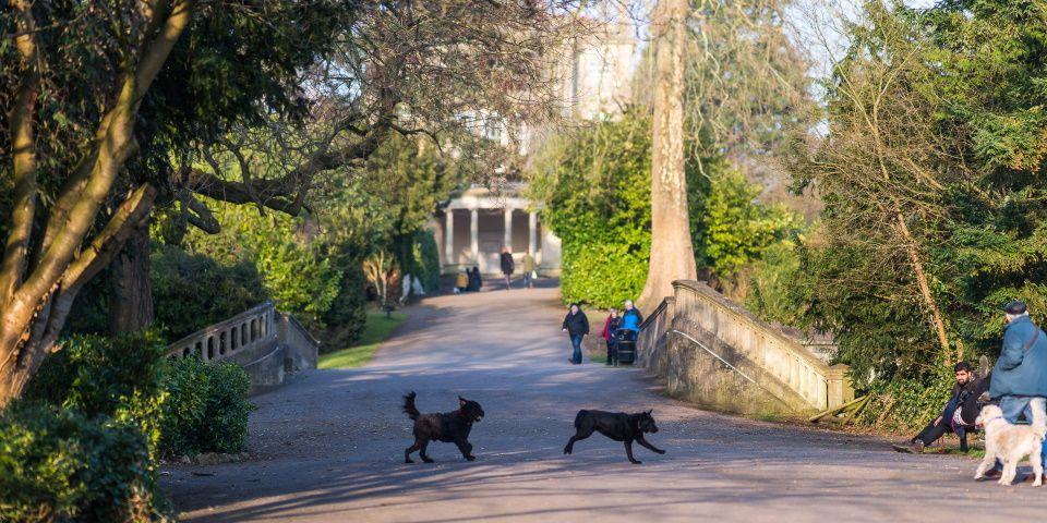 test Twitter Media - RT @visitbath: Gardens and outdoor attractions around Bath 🌼 https://t.co/qzvs5tZMdZ https://t.co/GXCvp5hSMx
