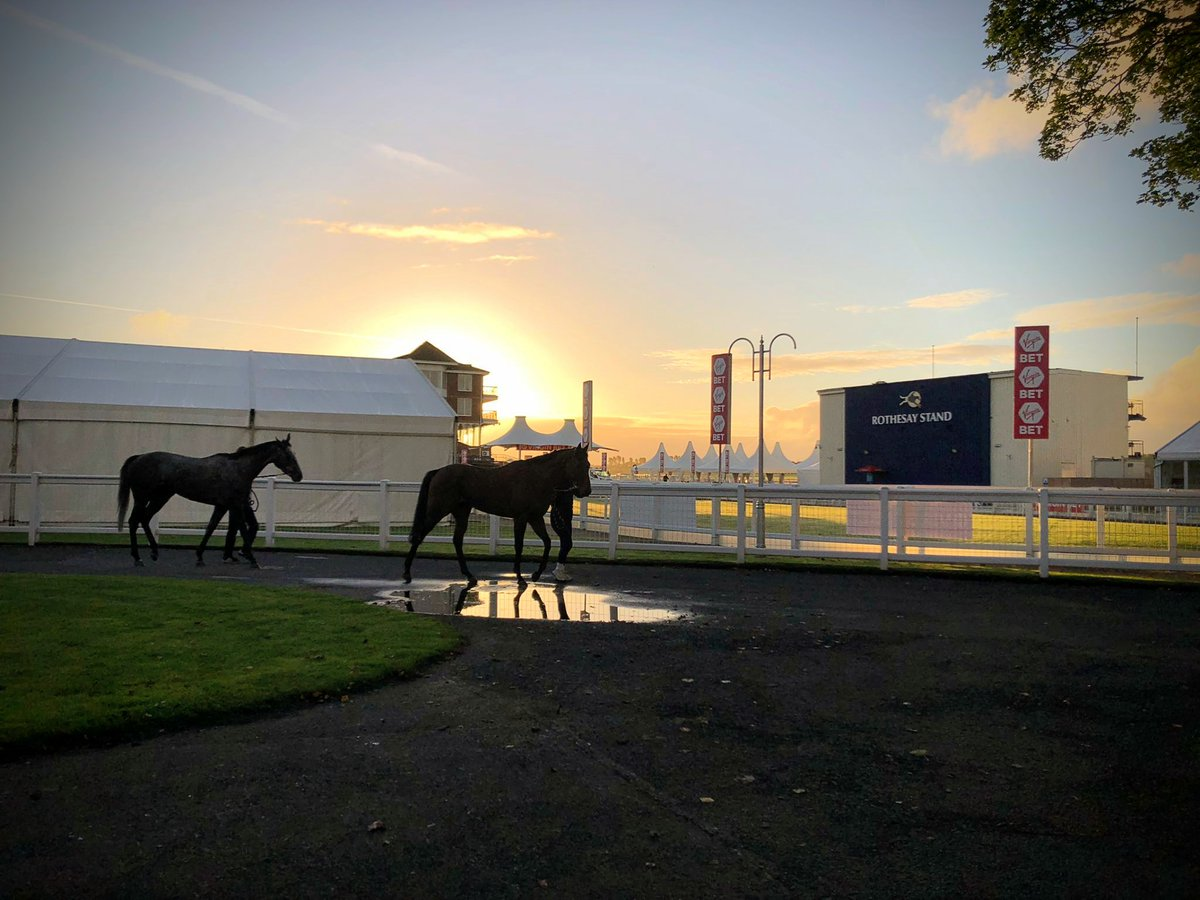 Glorious 👌☀️. Our runners stretch their legs ahead of a big few days at @ayrracecourse. The best of luck to all concerned 🍀  Credit: @CarolineBartram  #ayrraces  #thesceneisset  #goodmorning