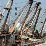 Image for the Tweet beginning: Pesca, in arrivo 15 milioni