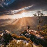 Image for the Tweet beginning: Golden morning in Saxon Switzerland
