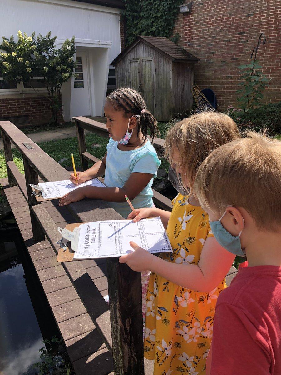 幼兒園科學家使用他們的 5 種感官在自然界中進行觀察#KWBPride https://t.co/yayVPPo3zV