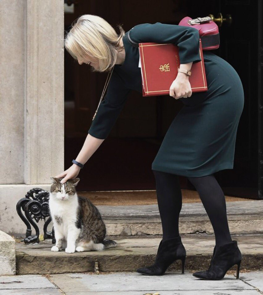 Liz Truss stroking Larry on the step of 10 Downing Street