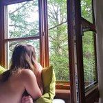 Image for the Tweet beginning: Soooo schön, zwischen den Baumwipfeln! 😍😍😍 Bin