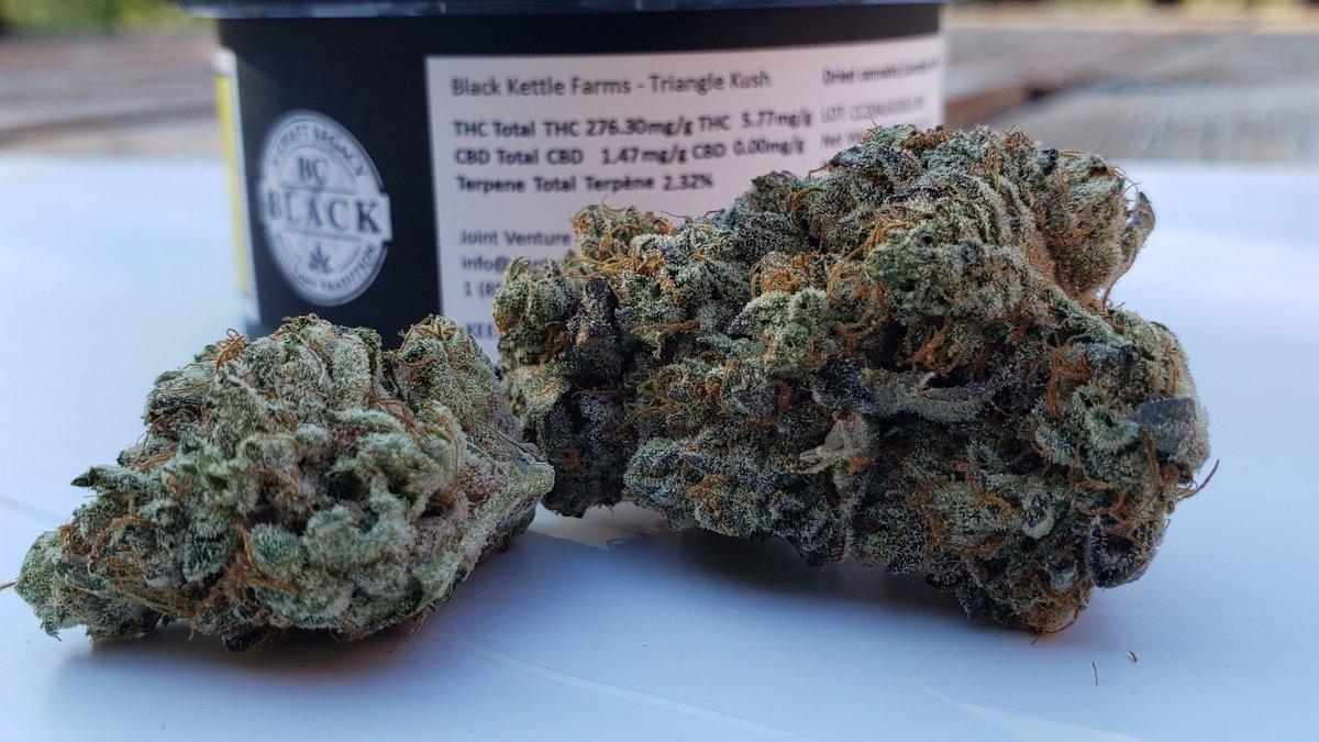FisforPhrank: Triangle Kush by @BlackKettle20 @CraftJoint #cannabis #cannabisindustry #canada #review