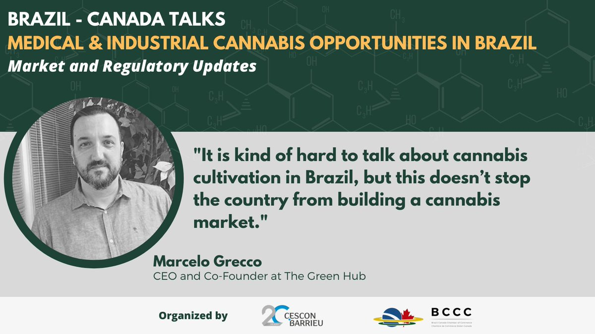 """brazcanchamber: """"It is kind of hard to talk about cannabis cultivation in Brazil, but this doesn't stop the country from building a cannabis market."""" - Marcelo Grecco, CEO and Co-Founder at The Green Hub #cannabismarket #cannabisindustry #cannabis"""