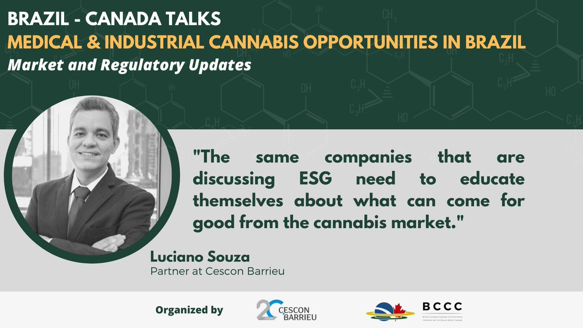 """brazcanchamber: """"The same companies that are discussing ESG need to educate themselves about what can come for good from the cannabis market."""" - Luciano Souza, Partner at Cescon Barrieu #cannabis #cannabisindustry"""