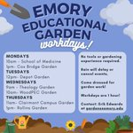 This semester is the perfect opportunity to work with the Emory Education Garden Project's seven garden plots! Tools and training are provided. Reach out to Erik Edwards at gardens@emory.edu for more information.