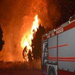 Image for the Tweet beginning: #notizie #sicilia Vasto incendio tra Partinico