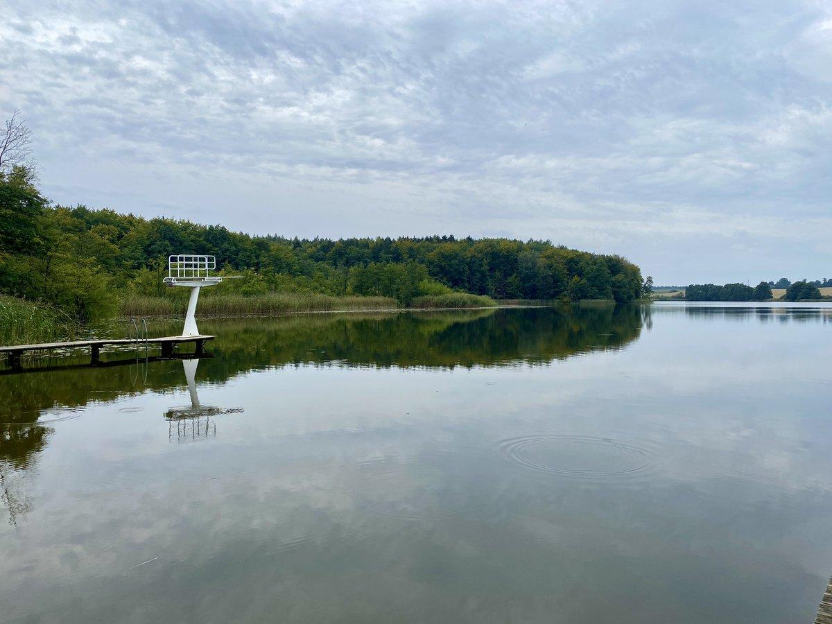Nicht mehr Sommer und noch nicht ganz Herbst. 🍂 Am Schumellensee in der #Uckermark. #nachbrandenburg @Uckermark_tmu https://t.co/GDLRMO4wSb
