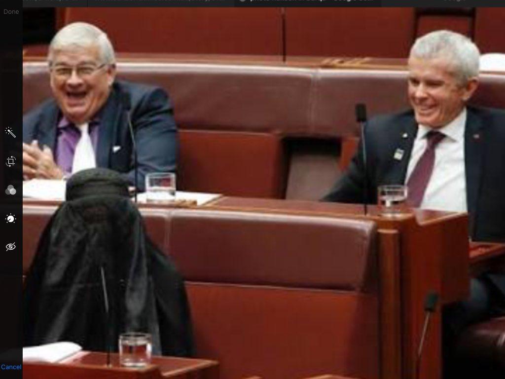 These 3 fools control Australian 🇦🇺 Senate   The #FellowDownUnder @ScottMorrisonMP & his LNP Coalition government relies on these 3 idiots to pass it's legislation😡  #auspol #uspoli #USPolitics #skynews #9news #Credlin @PMOnAir #TheDrum