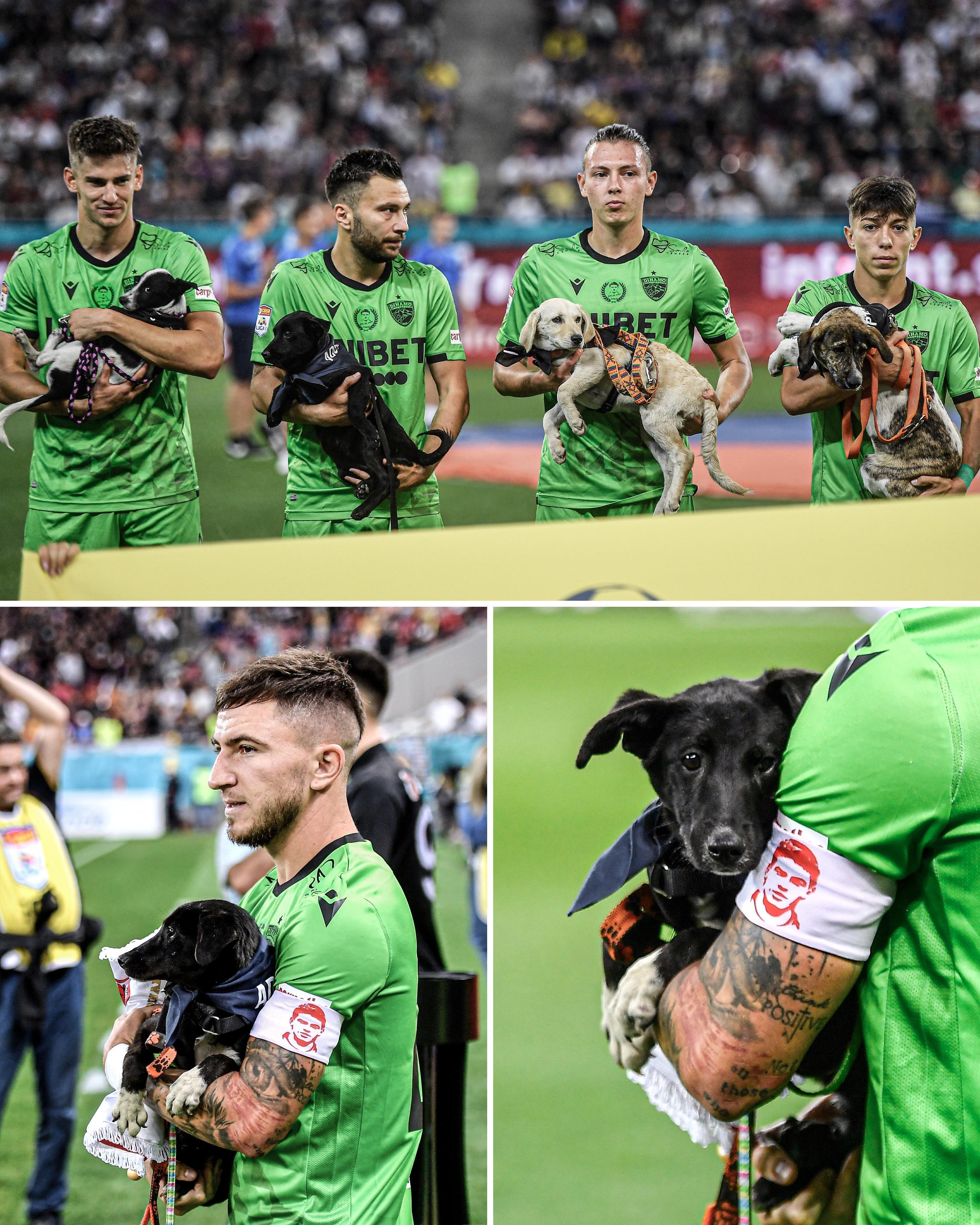 Montagem com três fotos exibindo dos jogadores do Dínamo exibindo os cachorros na primeira, um cão no colo na segunda, e um close ainda mais próximo do cão na terceira. Todos os cachorrinhos usam lenços.
