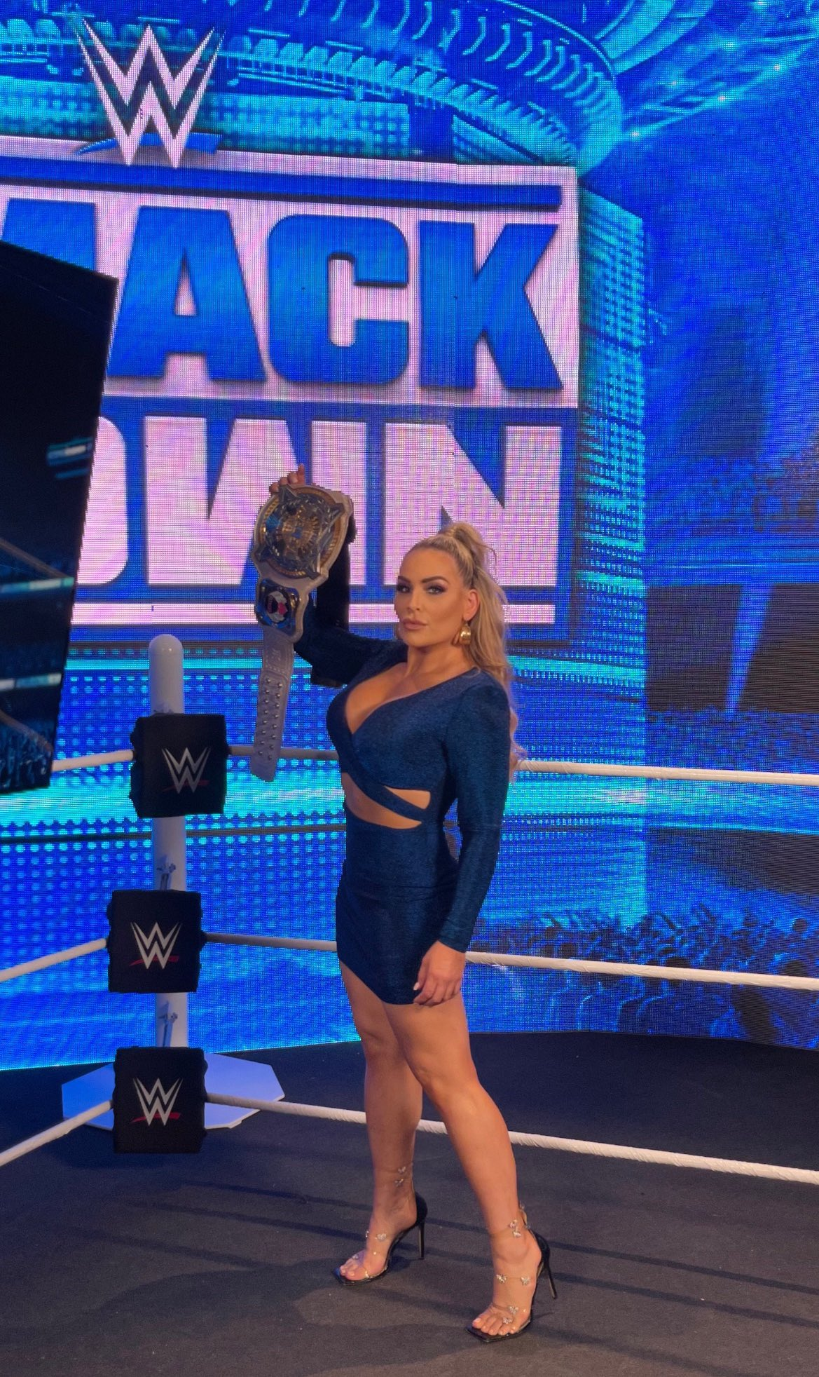 Photos: WWE Veteran Natalya Loves To Tease Fans In Revealing Outfits 19