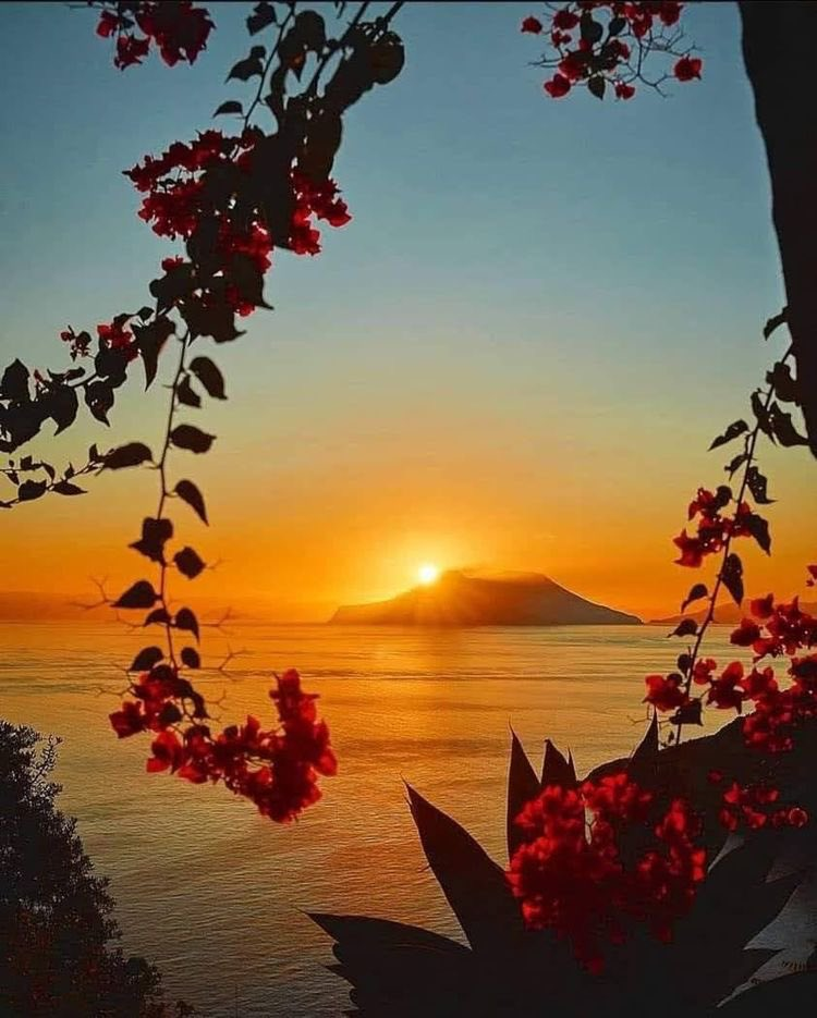 Always stay positive,    better days are on their way.  Good night everyone, sweet dreams!  #PeaceAndLove ♥️