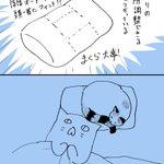 ニトリでいい枕を購入するも、結局はお猫様に取られてしまうw